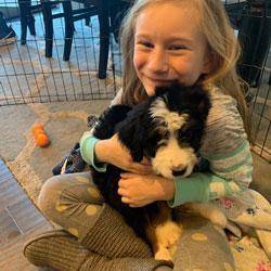 Bernedoodle Testimonys Angel Breeze Puppies In Ohio